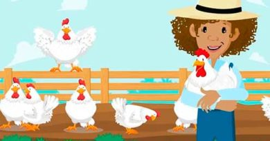 gallinas animadas