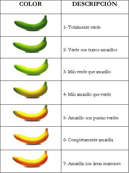 madurez del platano por color